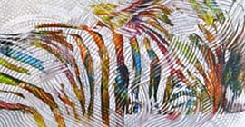 """HomePage Highlight Foto """"Zebra"""" - onderwerp """"Inzicht"""""""