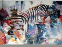 Zebra 2014-5
